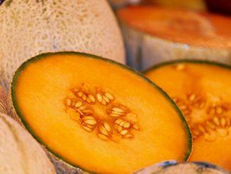 Melone-copertina