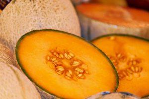 Melone - Foto presa da Pixabay